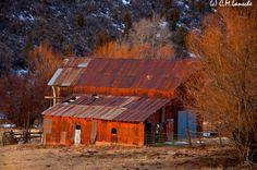 Amy's Barn.  Summit County, Utah.