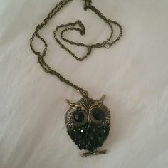 Cute owl necklace Cute bronze and black rhinestone owl necklace! Forever 21 Jewelry Necklaces