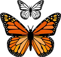 Discover thousands of images about Silhouette Design Store - View Design butterfly monarch Butterfly Stencil, Butterfly Drawing, Butterfly Template, Butterfly Nail, Butterfly Painting, Butterfly Wallpaper, Butterfly Design, Monarch Butterfly, Blue Butterfly