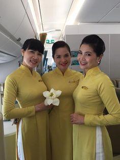 Vietnam Airlines cabin crew On Vietnam Airlines, Air Hostess Uniform, Airline Cabin Crew, Beautiful Vietnam, Airline Uniforms, Intelligent Women, Oriental Fashion, Flight Attendant, Asian Beauty