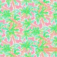 Lilly Pulitzer - Nibbles - iPad Background