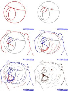 Easy to Draw Bear Standig | This entry was posted in How to Draw Realistic , How to Draw Realistic ...