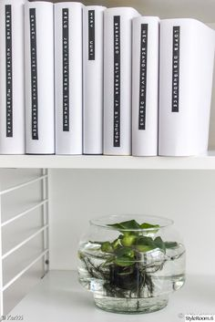 kirjahylly,string-hylly,viherkasvit sisustuksessa,viherkasvi,kirjat,olohuone,työhuone,Tee itse - DIY