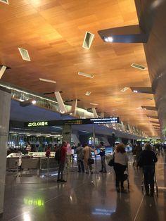 Doha airport amazing beautiful!