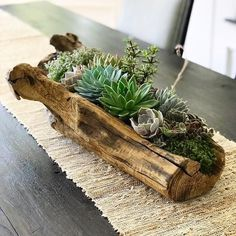 Ethically sourced driftwood is filled to the brim with an array of succulents in varying colors and textures. Plants are surrounded with micro river pebbles and living moss to ensure soil health…