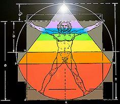 Los Chakras; desarrollo espiritual humano: El Hombre de Vitrubio