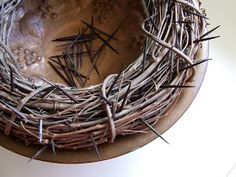 A sweet reader asked for more information about our crown of thorns pictured in the post below. I have had this thing for ages, it seems. I ...
