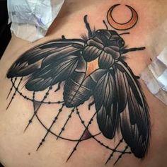 cicada tattoo - Google Search