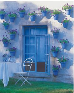Blue Flower Pots