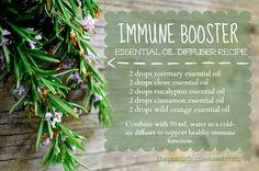 immune support essential oil diffuser recipe