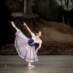Oxana Skorik as Giselle in Act 1 of the Mariinsky Ballet's Giselle. Photo by Jack Devant