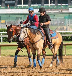 Smokey (ex reining horse This Whiz Shines), with American Pharoah