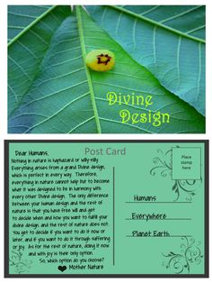 A post card from Mother Nature about fulfilling our Divine design. Mother Nature, Plant Leaves, Post Card, Cards, Design, Quotes, Quotations, Maps