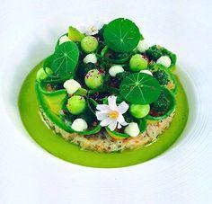 Chef Jason Howard Avocado crab & tian / parsley cucumber /garlic mayo & herb oil
