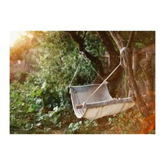 garden party. found on Polyvore featuring backgrounds, pictures, photos, pics and nature