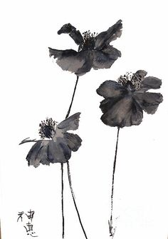 Sumi E Poppies by Sibby S