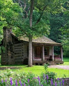 Little Dream cabin. Love the tree and the flowers close by.  It doesn't have to be big to be home. SO cute.
