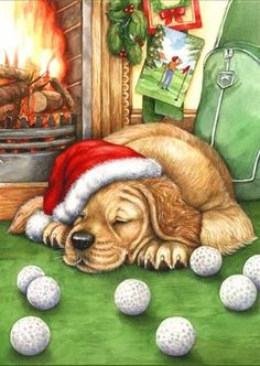 peintres debbie cook - Page 3 Merry Christmas Dog, Christmas Animals, Animal Nail Designs, Gatos Cats, Christmas Coloring Pages, Cute Animal Pictures, Christmas Pictures, Cute Illustration, Dog Art