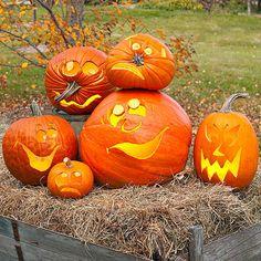 Best Halloween Pumpkin Stencils and Ideas Pumpkins and more pumpkins; Bwahahaha!!!! - AGlez