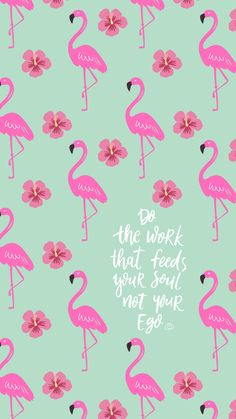 Elevate your mood on October Cute Backgrounds, Phone Backgrounds, Cute Wallpapers, Wallpaper Backgrounds, Flamingo Wallpaper, Wallpaper Quotes, Iphone Wallpaper, Wallpaper Telephone, Cellphone Wallpaper