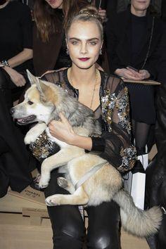 Ambassadrice Chanel à 20 ans, visage de Burberry en tandem avec Kate Moss, nouvelle héroïne de Luc Besson… Cara Delevingne a pris d'assaut la mode dès 2010. Cinq ans après, le top aux sourcils iconiques et aux grimaces inégalables tient le haut de l'affiche au cinéma. Retour sur sa success-story express.