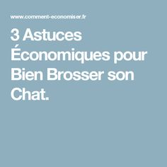 3 Astuces Économiques pour Bien Brosser son Chat.