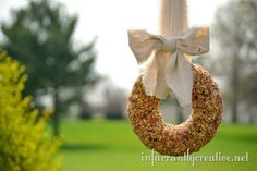 Homemade bird seed wreath | Infarrantly Creative