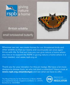£3 GBP - Rspb Pin Badge | Small Tortoiseshell Butterfly | On Gnah Card [01311] #ebay #Collectibles British Wildlife, Pin Badges, Tortoise Shell, How To Find Out, Butterfly, Jewellery, Cards, Ebay, Jewels