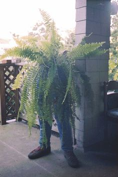 pants planter!  Cute but a little creepy