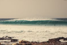 surfing days on Behance