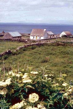 Aran Islands by derhur(away), via Flickr