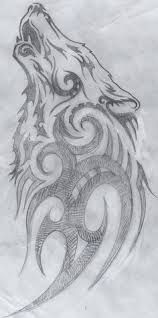 Image result for wolf sketches
