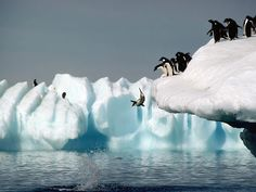 Antartica - Explore the World with Travel Nerd Nici, one Country at a Time. http://TravelNerdNici.com