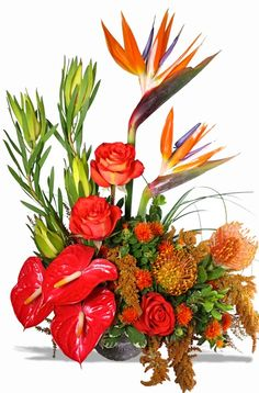 Exotic Flower Arrang