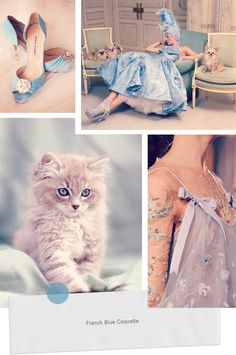 french blue palette, the dress is ethereal... {i would not wear the kitten}.