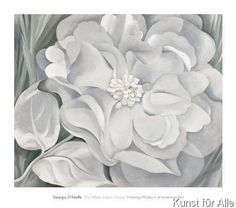 Georgia O'Keeffe - The White Calico Flower, 1931