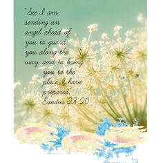 Exodus 23:20 Not KJV but still one of my fav. verses exsp. being a military family :)