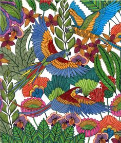 Original Drawing From Tropical Wonderland By Joanna Basford