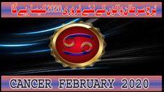 by m s Bakar Urdu Hindi Pisces Monthly Horoscope, February, Cancer