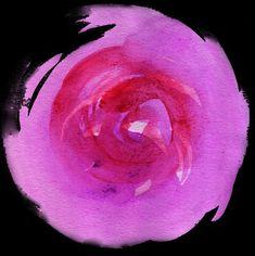 Hot pink watercolor rose Free Digital Scrapbooking, Watercolor Rose, Hot Pink, Celestial, Pink Watercolor, Pink