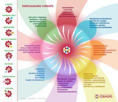 Infografía descriptiva de menú especialidades
