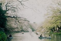 Inokashira 4 Chome, Mitaka-shi, Tokyo // photograph : nijntjee / ai