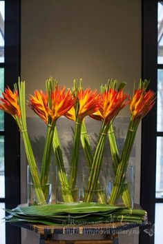 Gallery.ru / Фото #183 - цветочные композиции5 - semynova