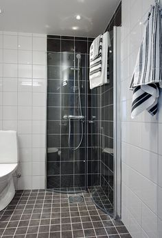 more folding shower doors - makes good use of a small space