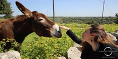 #Sicily: Have a great walk with #donkeys in the #Madonie #National #Park!