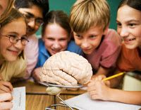 Middle school science experiments are amazingly interesting. In this Buzzle article, we take a look at various ideas that can be used by middle school students to make an amazing science project. Assessment For Learning, Learning Activities, Kids Learning, Teaching Resources, Teaching Ideas, Summer Activities, Student Learning, School Science Experiments, Science Ideas
