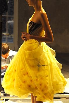 Alexander McQueen Bee Collection - notice the flowers inside the skirt, honeycomb detail on the bodice