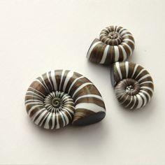 Polymer clay Beads - Faux Seashells - DIY - Metallic Brown and White - Handmade jewelry supplies. $12.50, via Etsy.