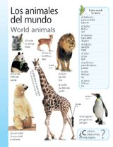 World Animals (Animales del mundo) themed vocabulary -- Use these handouts to introduce Spanish vocabulary for wild animals. Get the printables from TeacherVision: https://www.teachervision.com/spanish-language/printable/70420.html