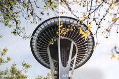 Duan Castillo - Seattle Lightroom Presets Collection on FilterGrade